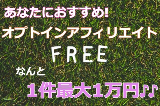 無料オプトインアフィリエイト!1件最大1万円稼ぐ方法教えます!7